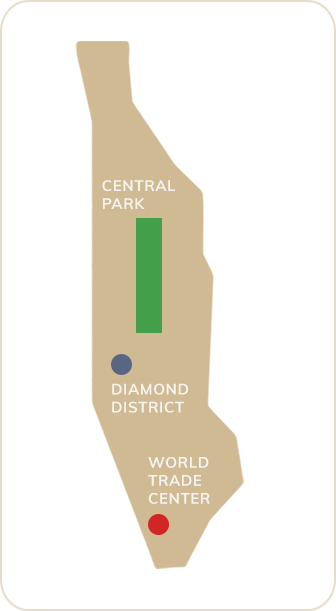 Map of Nyc Icon